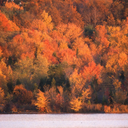Bike & Boat: Fall Foliage Paddle