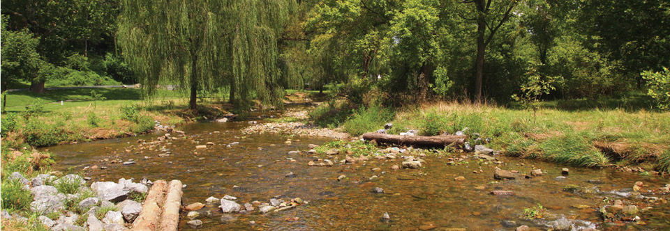 stream_restoration