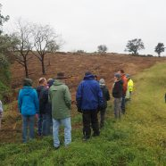 Natural Habitat Making a Comeback at Trexler Nature Preserve