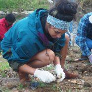 Coplay Creek Stream Restoration & Planting