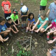 Day Camp: Outdoor Skills