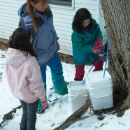 Maple Sugaring & Pancakes – March 4