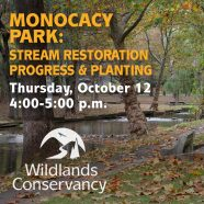 Conservation Project Tour: Monocacy Park