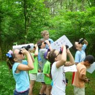 Day Camp: Outside Art