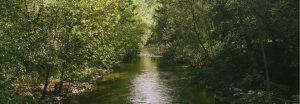 Family Fishing Day @ Covered Bridge Park | Allentown | Pennsylvania | United States